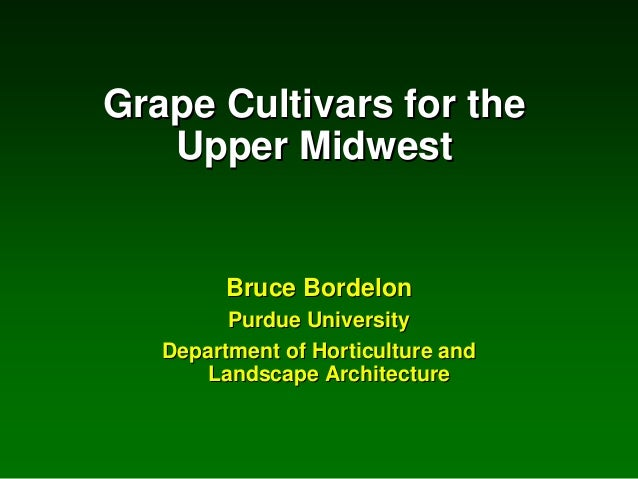 Grape Cultivars for the Upper Midwest  Bruce Bordelon Purdue University Department of Horticulture and Landscape Architect...