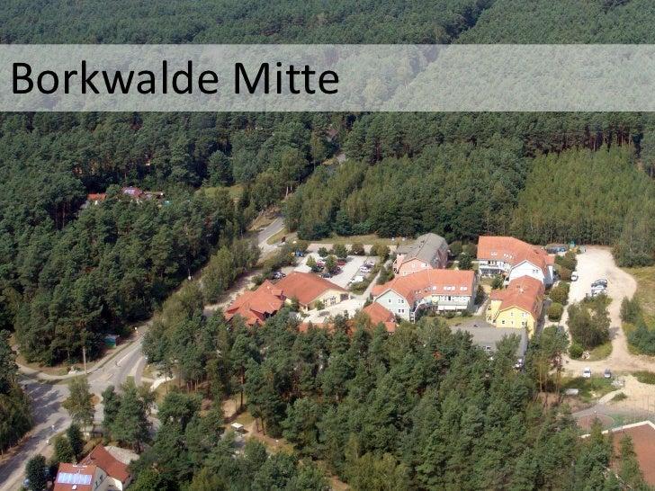Borkwalde Mitte