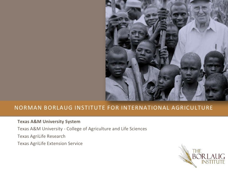 Norman Borlaug Institute for International Agriculture<br />Texas A&M University System<br />Texas A&M University - Colleg...
