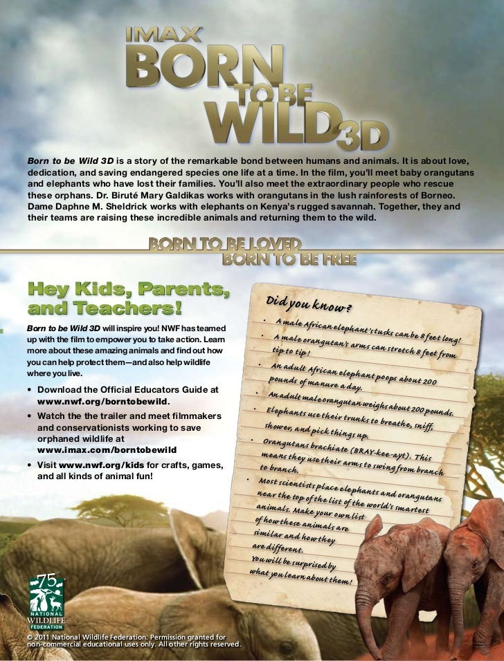 Born to be Wild 3D is a story of the remarkable bond between humans and animals. It is about love,dedication, and saving e...