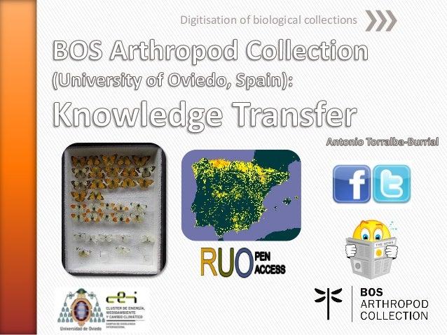 BOS Arthropod Collection (University of Oviedo): Knowledge transfer