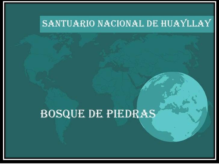SANTUARIO NACIONAL DE HUAYLLAY BOSQUE DE PIEDRAS