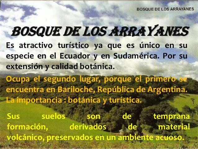 BOSQUE DE LOS ARRAYANESEs atractivo turístico ya que es único en suespecie en el Ecuador y en Sudamérica. Por suextensión ...
