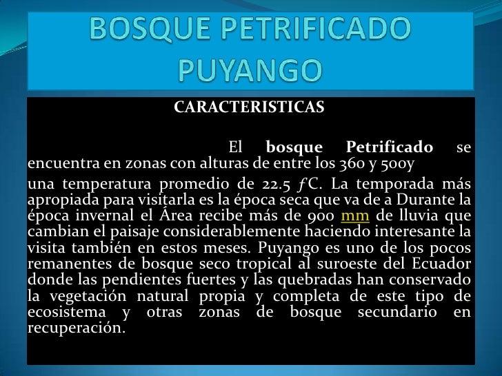 BOSQUE PETRIFICADO PUYANGO<br />CARACTERISTICAS<br /><br />El bosque Petrificado se encuentra en zonas con alturas de...