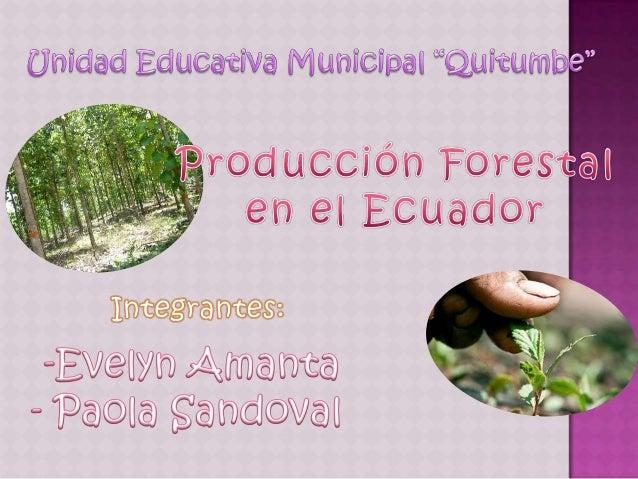 PRODUCCIÓN                                               FORESTAL            Bosque.- recurso renovable (a través de      ...