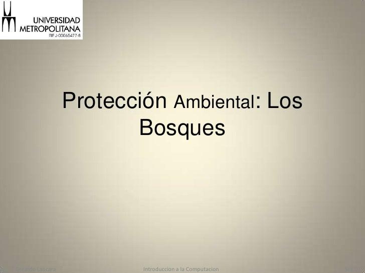 Protección Ambiental: Los Bosques<br />