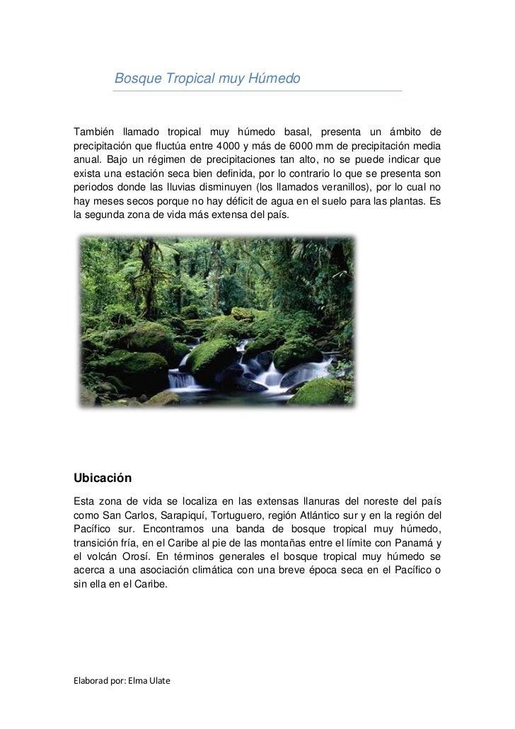 Bosque Tropical muy HúmedoTambién llamado tropical muy húmedo basal, presenta un ámbito deprecipitación que fluctúa entre ...