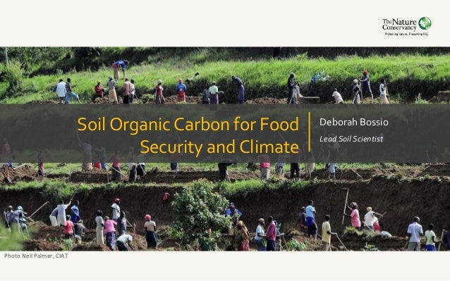 Soil organic carbon for food security and climate for Soil organic carbon