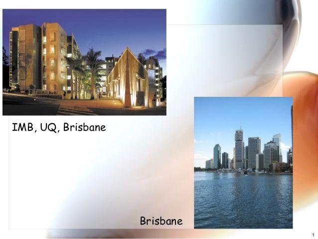 1 IMB, UQ, Brisbane Brisbane
