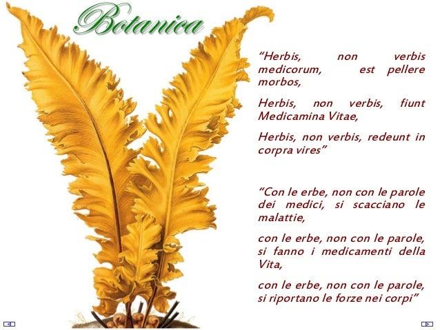 R. Villano - Storia della Botanica farmaceutica