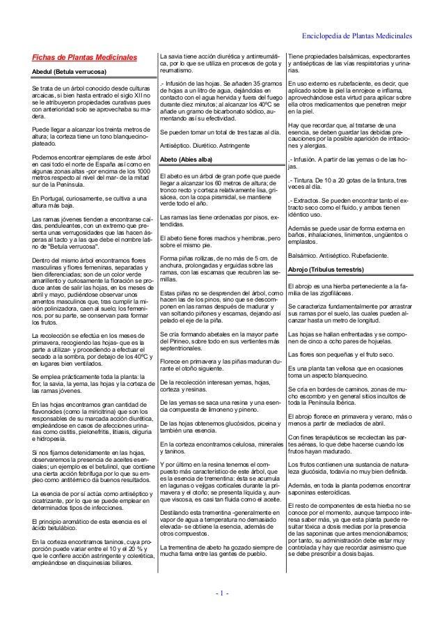 Enciclopedia de Plantas Medicinales - 1 - Fichas de Plantas Medicinales Abedul (Betula verrucosa) Se trata de un árbol con...