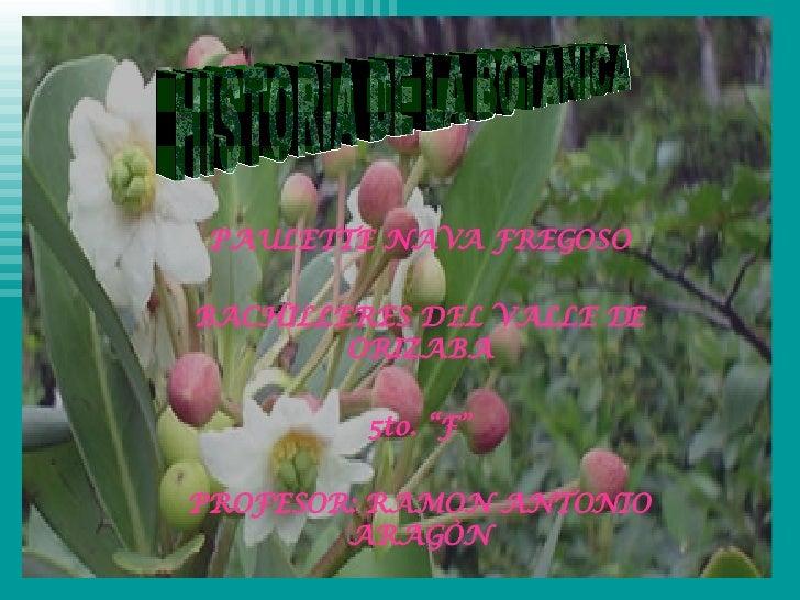 """PAULETTE NAVA FREGOSO BACHILLERES DEL VALLE DE ORIZABA 5to. """"F"""" PROFESOR: RAMON ANTONIO ARAGÒN HISTORIA DE LA BOTANICA"""