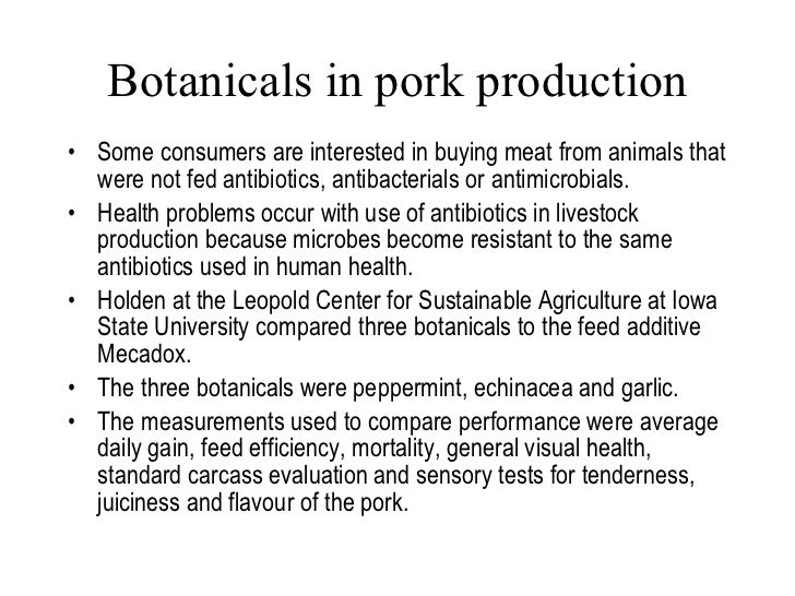 Botanicals in pork production <ul><li>Some consumers are interested in buying meat from animals that were not fed antibiot...