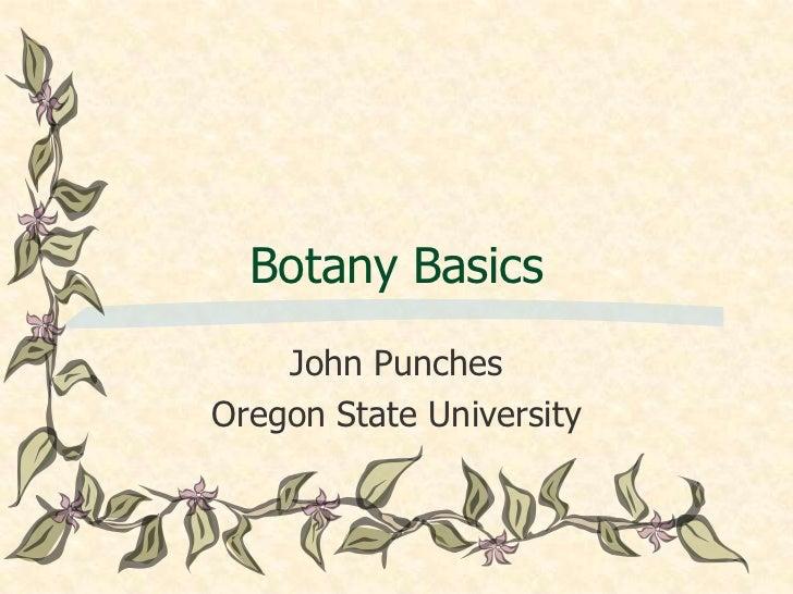 Botany Basics    John PunchesOregon State University