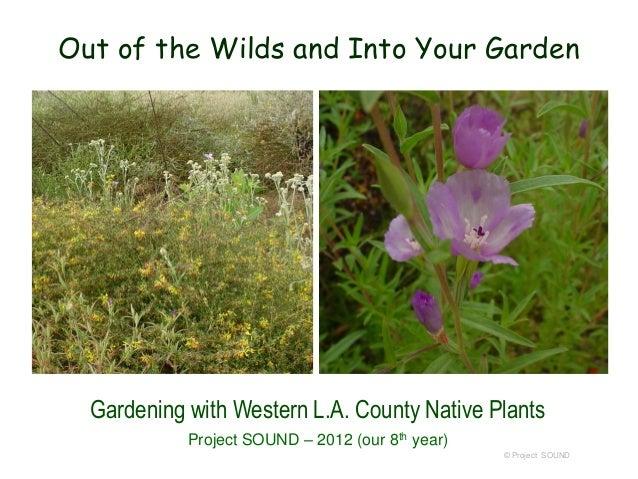 Botany for gardeners   2014