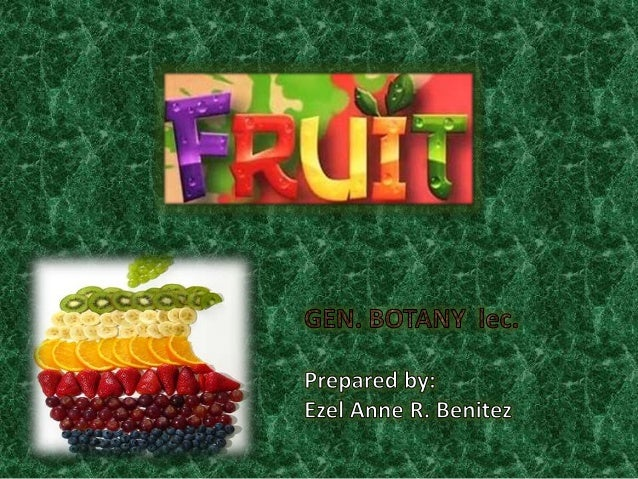"Fruit • The structure known as a ""fruit"" is found only in the members of the Angiosperms. • A fruit developed solely from ..."