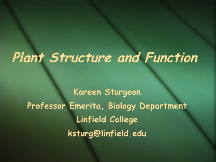 Plant Structure and Function Kareen Sturgeon Professor Emerita, Biology Department Linfield College [email_address]
