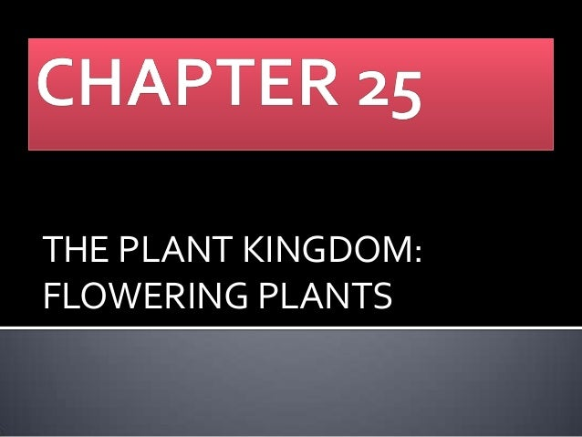 THE PLANT KINGDOM: FLOWERING PLANTS