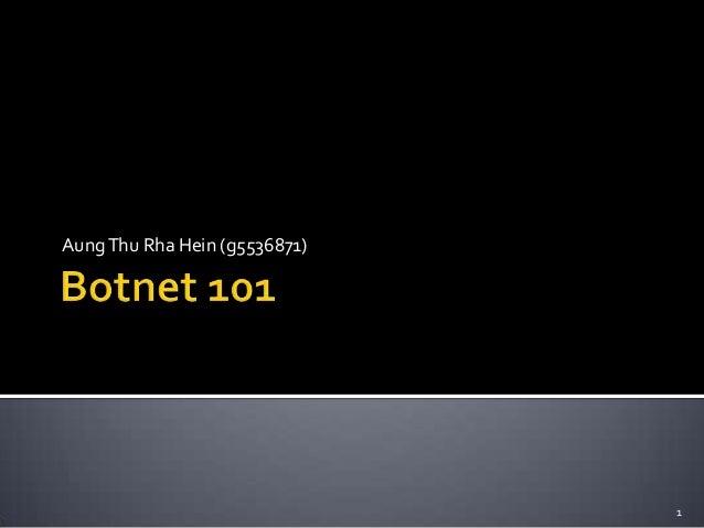 Botnets 101