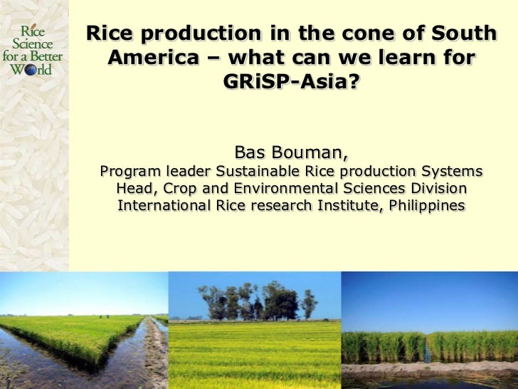 Rice production in the cone of South  America – what can we learn for           GRiSP-Asia?                   Bas Bouman, ...