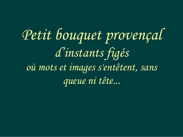 Petit bouquet provençal       d'instants figésoù mots et images sentêtent, sans         queue ni tête...