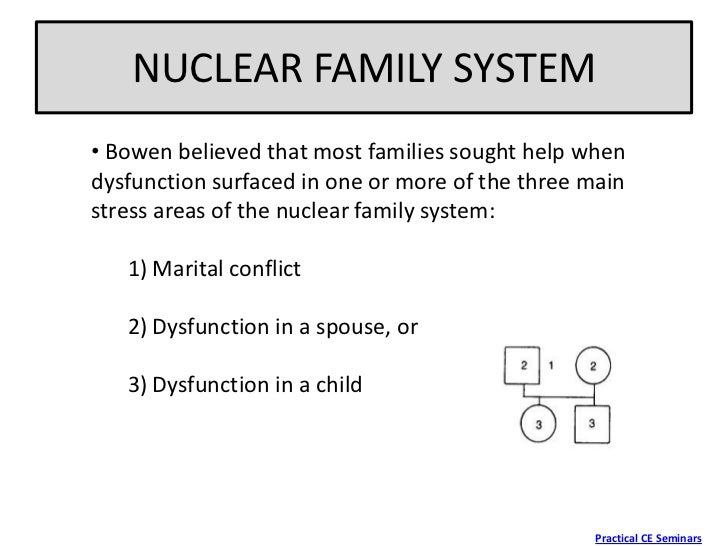 Essays on family systems theory