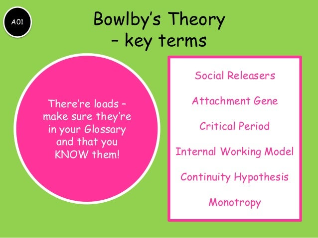 bowlby attachment essay This essay will compare and contrast horney's and bowlby's key concepts of personality notably that childhood is a crucial development period for personality, that parental relationships are determinants of personality, and that poor parental relationships can adversely impact personality development.