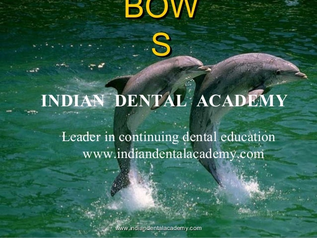 BOW S INDIAN DENTAL ACADEMY Leader in continuing dental education www.indiandentalacademy.com  www.indiandentalacademy.com