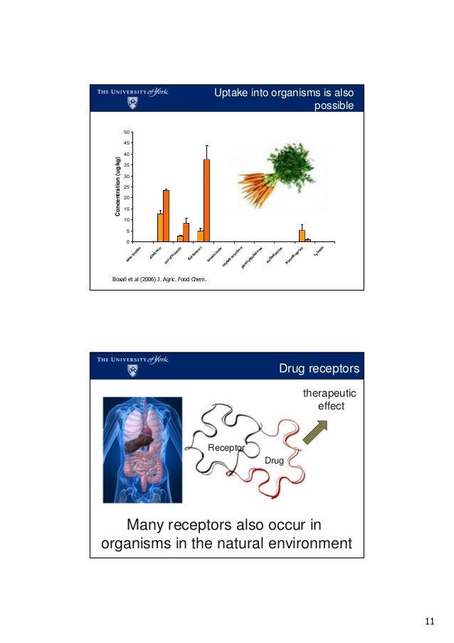 safe antibiotics and coumadin