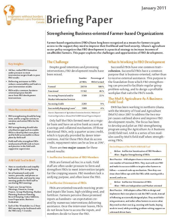 January 2011                                        Briefing Paper                                        Strengthening Bu...