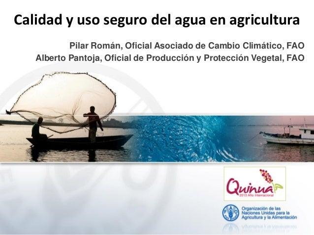 Calidad y uso seguro del agua en agricultura Pilar Román, Oficial Asociado de Cambio Climático, FAO Alberto Pantoja, Ofici...