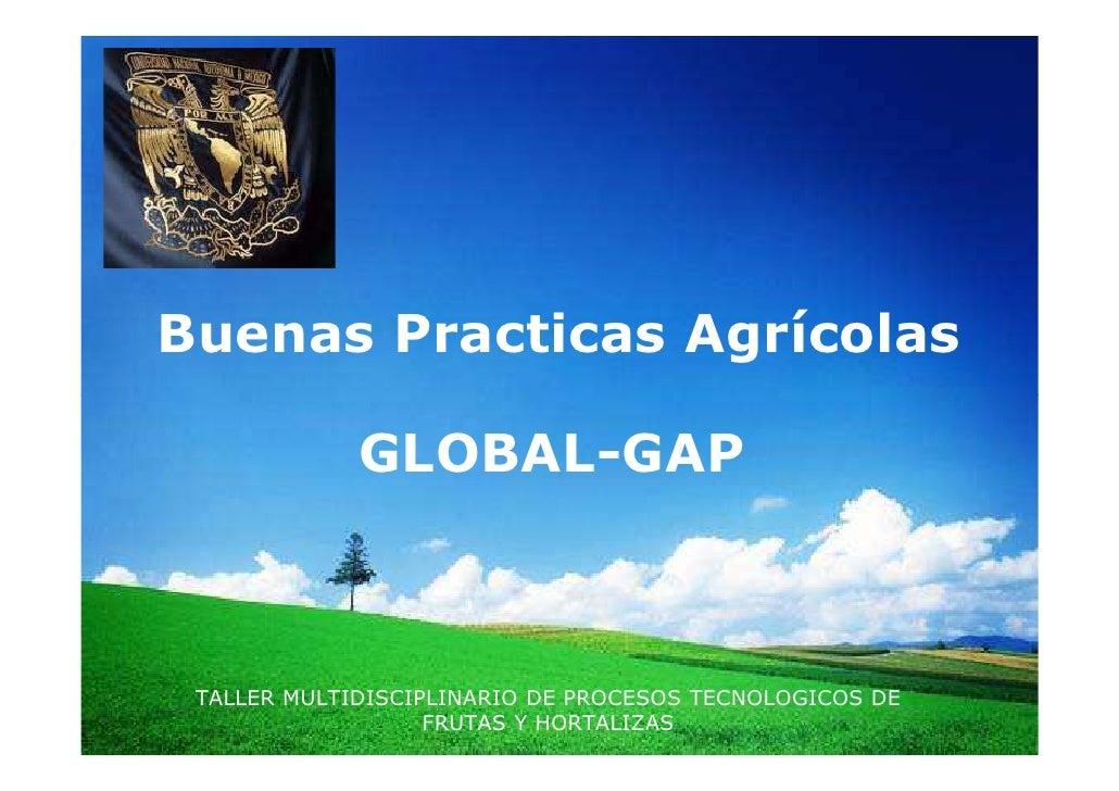 BPA Global GAP