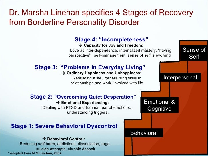 A Borderline Personality Disorder Primer By Kiera Van