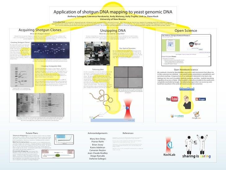 Application of shotgun DNA mapping to yeast genomic DNA                                                                   ...