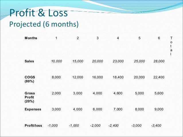12 Month Profit and Loss Projection  Hashdoc