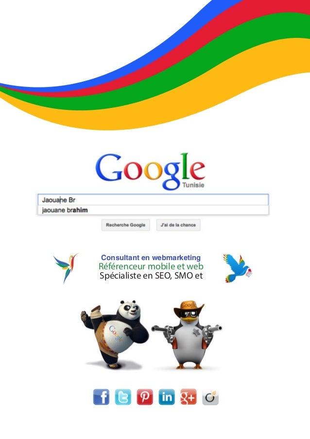Consultant en webmarketing Référenceur mobile et web Spécialiste en SEO, SMO et