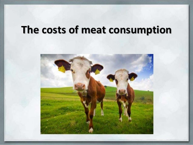 The costs of meat consumption