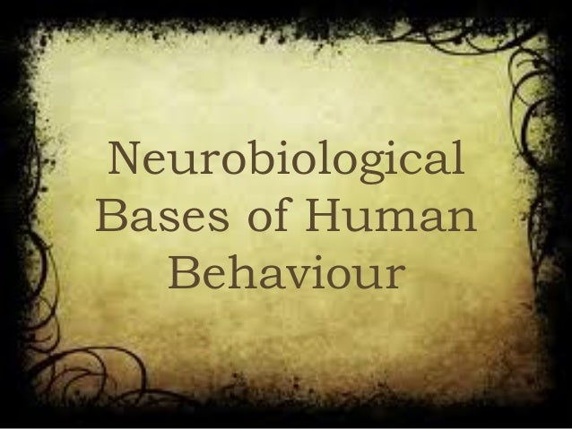 Neurobiological Bases of Human Behaviour