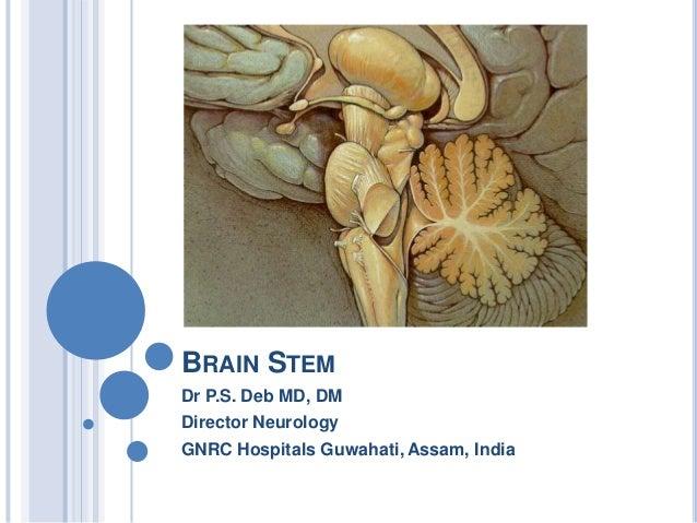 BRAIN STEM Dr P.S. Deb MD, DM Director Neurology GNRC Hospitals Guwahati, Assam, India