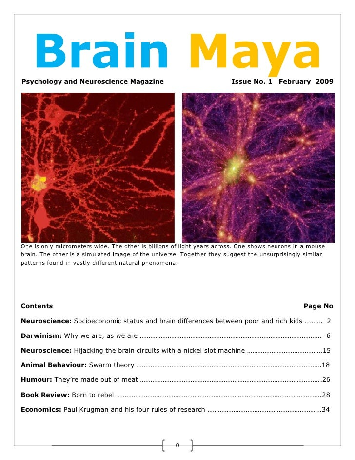 Psychology and Neuroscience Magazine                                   Issue No. 1     February 2009     One is only micro...