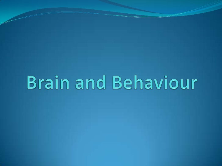 Brain and behaviour 2010