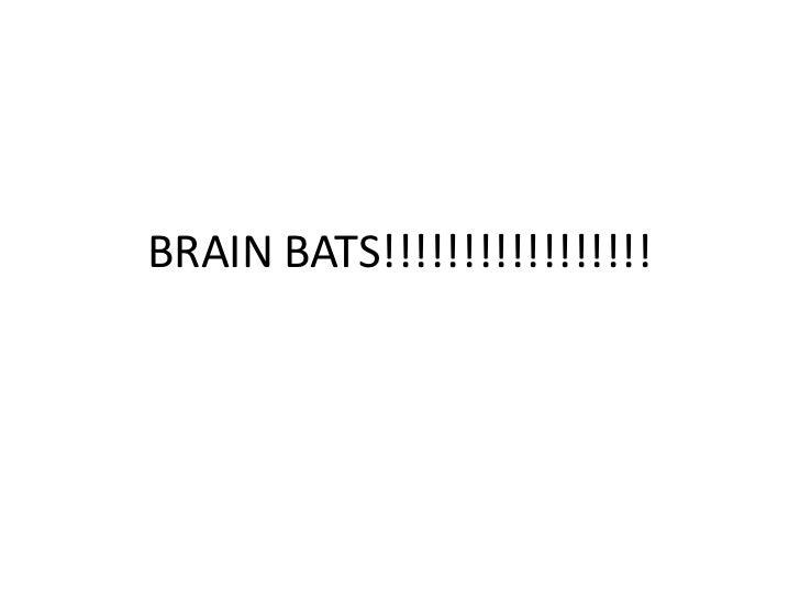 Brain bats!!!!!!!!!!!!!!!!!