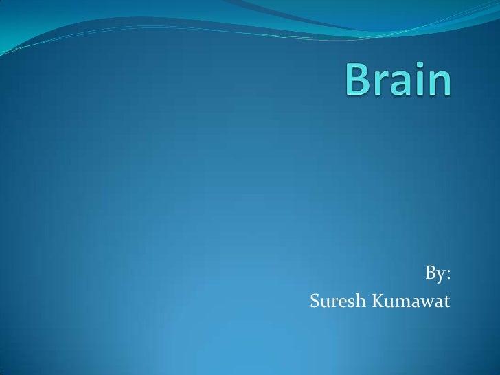 Brain<br />By:<br />Suresh Kumawat<br />