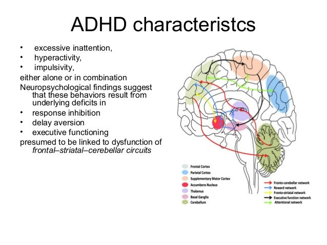 Brain Developm Adhd2