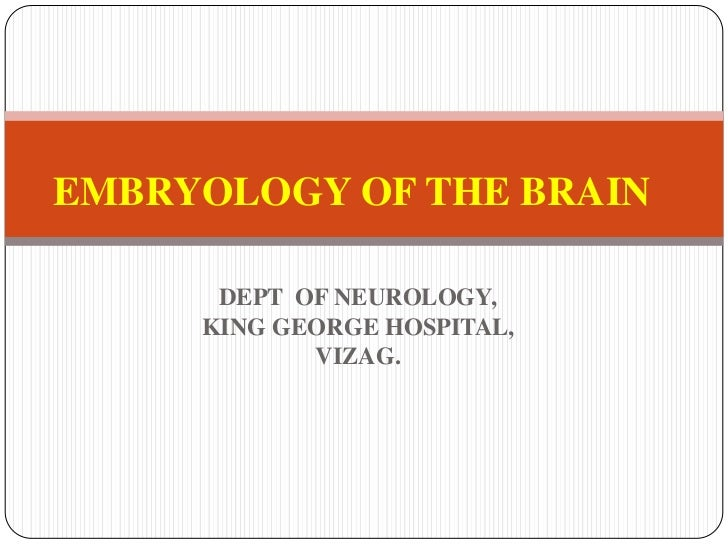 EMBRYOLOGY OF BRAIN,NEW