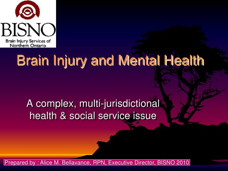 Brain Injury and Mental Health        A complex, multi-jurisdictional        health & social service issuePrepared by : Al...