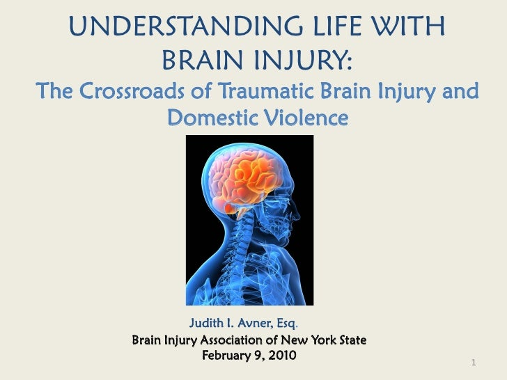 UNDERSTANDING LIFE WITH         BRAIN INJURY: The Crossroads of Traumatic Brain Injury and             Domestic Violence  ...
