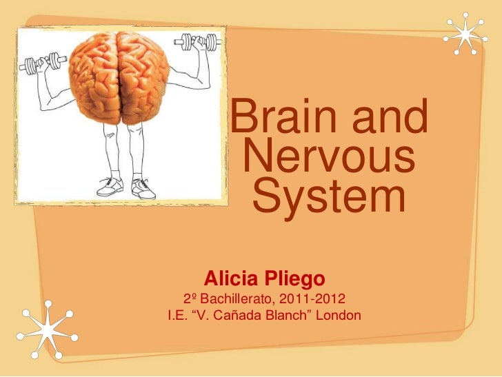 Brain & Nervous System, by Alicia