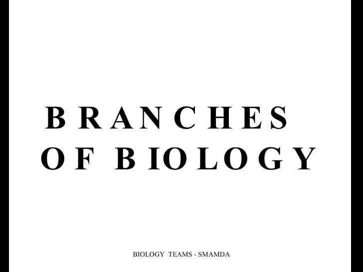 BRANCHES   OF BIOLOGY BIOLOGY  TEAMS - SMAMDA