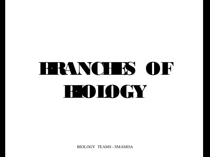 BRANCH S OF       E  B OGY   IOL   BIOLOGY TEAMS - SMAMDA